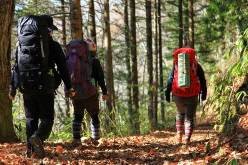 将監小屋からの林道歩き
