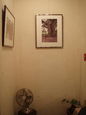アニスル写真展