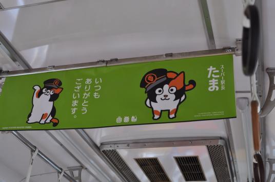 たま電車8