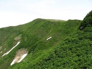 狩場山遠望190624
