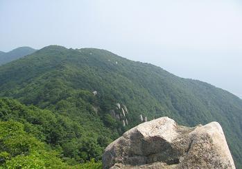 蠑螺ヶ岳への縦走路200705