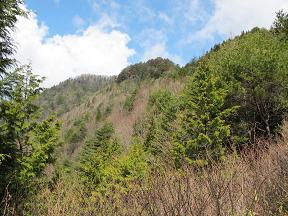 風越山稜線220424