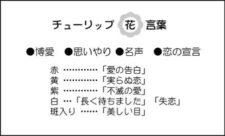 花名刺 裏面-花言葉 HU-1