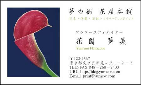 花名刺 HN-28