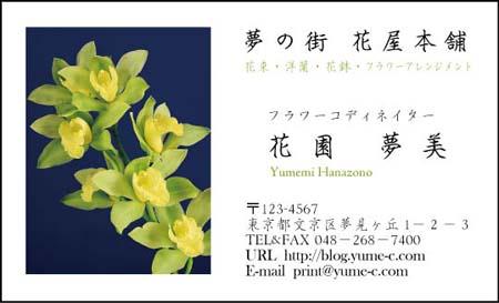 花名刺 HN-29