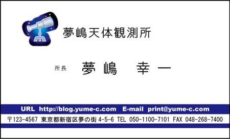 ビジネス名刺 ロゴ入り BS-23