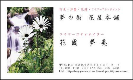 花名刺 HN-38