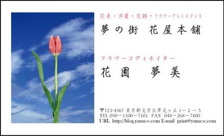 花名刺 HN-40