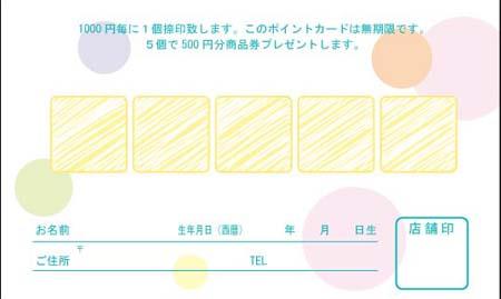 ポイントカード PCU-13