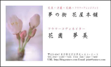 花名刺 HN-41