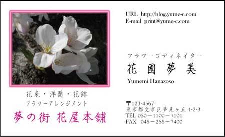 花名刺 HN-42
