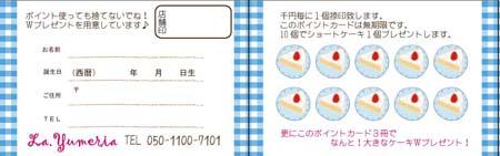 ポイントカード(横型)PYU-02