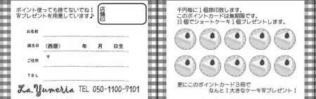 ポイントカード PAU-02B