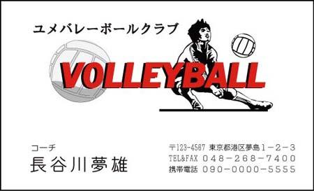 スポーツ名刺 DS-18