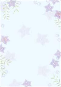 桔梗 A4