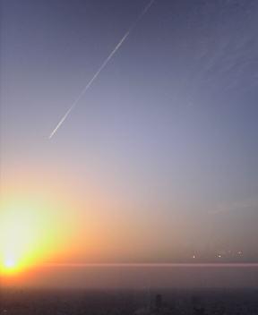 太陽に向かって