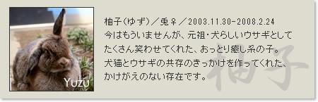prof_yuzu
