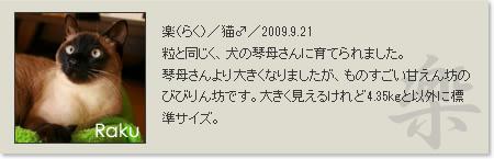 prof_raku_2013