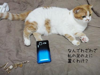 20110702_3.jpg