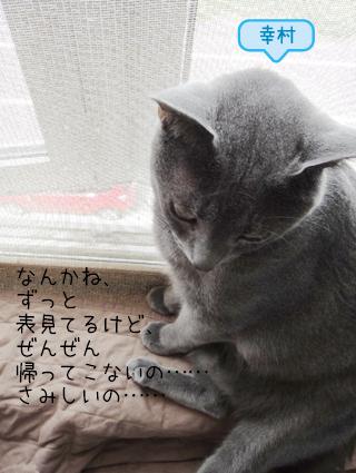 20110831_2.jpg