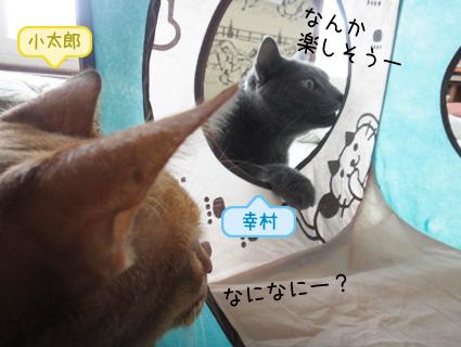 20110908_2.JPG