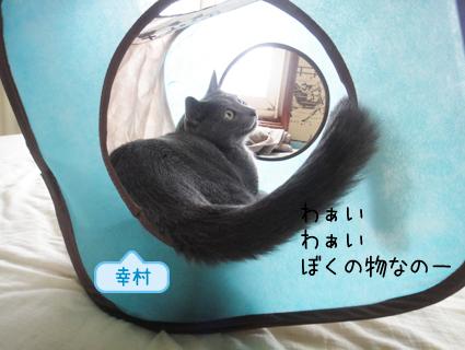 20110908_5.JPG