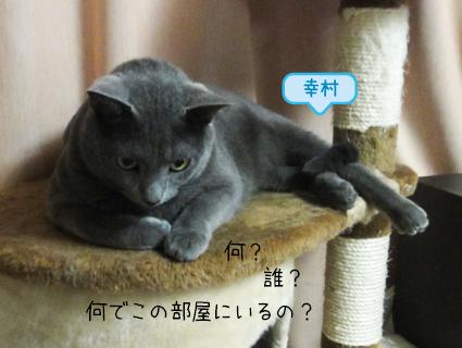 20111010_5.jpg