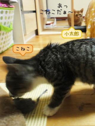 20111010_2.jpg