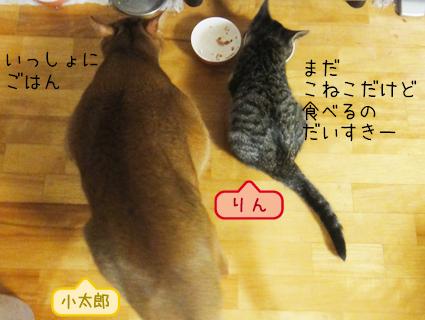 20111021_1.JPG