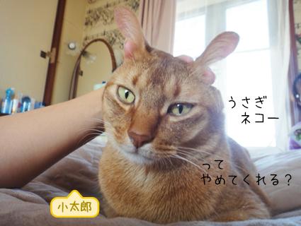 20111021_3.JPG