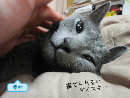 20111021_5.JPG