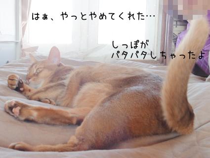 20111024_3.jpg