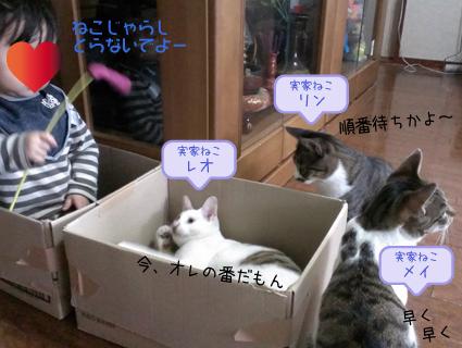 20140515 (1).jpg