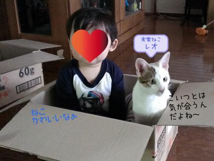 20140515 (7).jpg
