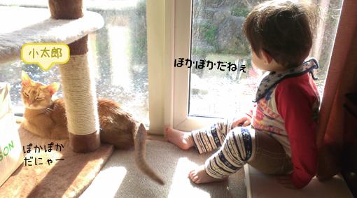 20140620 (2).jpg