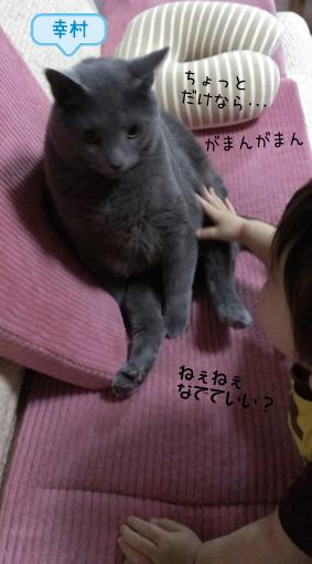 20140620 (3).jpg