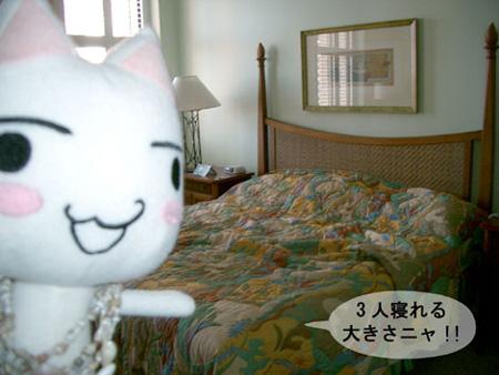トロとハワイのベッド