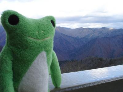 カエルと谷川岳