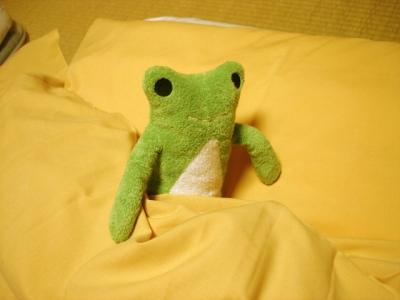 カエルご就寝