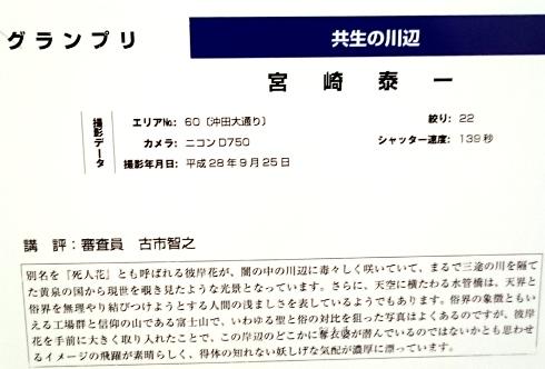 DSC_2010.JPG