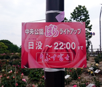 DSC_2046.JPG