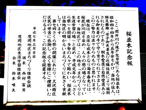 ブログDSC01460.JPG