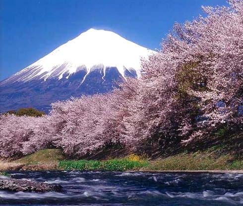 ブログ 富士山No2-AR19-E026.jpg