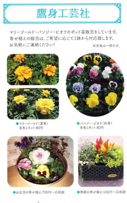 ブログ2-1201900604�220190604.jpg