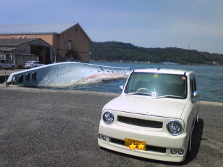 yobuko01.jpg
