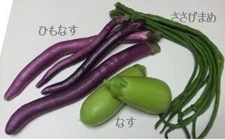 本日購入野菜