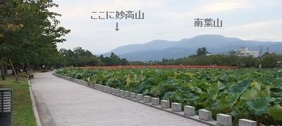 高田公園外堀