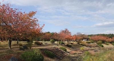 稲荷公園2