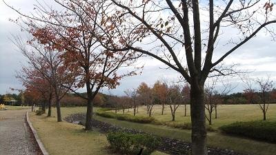 稲荷公園5