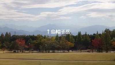 稲荷公園7